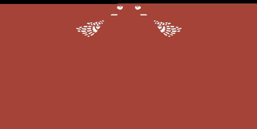 fågelbro